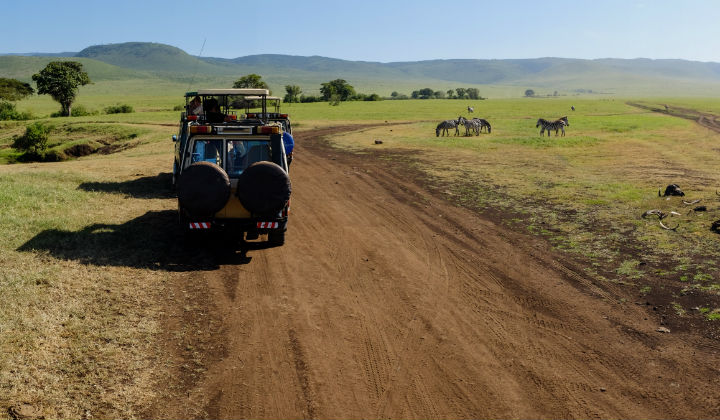 5 unforgettable safari holidays